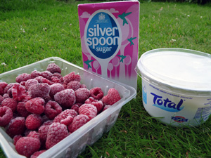 Ingredients: frozen raspberries, greek yogurt   and icing sugar